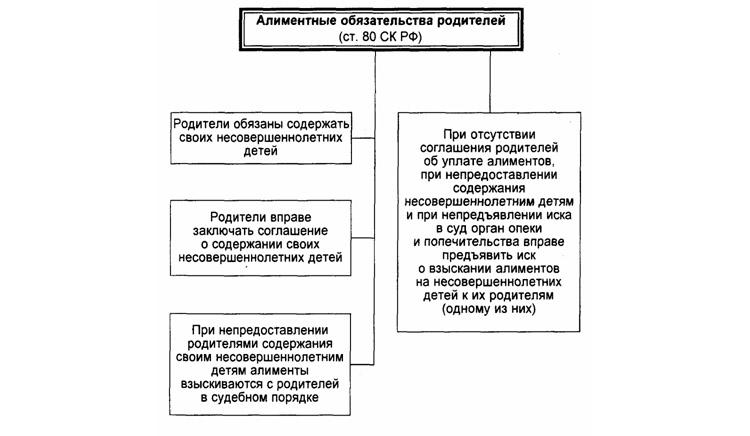 Механизм возникновения алиментных обязательств
